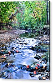 Autumn Arrives Acrylic Print by Frozen in Time Fine Art Photography