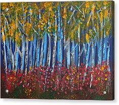 Autumn Aspens Acrylic Print by Donna Blackhall
