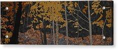 Autumn Carpet Acrylic Print by Anita Jacques
