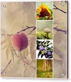 Autumn Collage Acrylic Print by Heike Hultsch