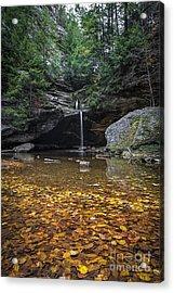 Autumn Falls Acrylic Print by James Dean