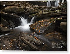 Autumn Falls Acrylic Print by John Stephens