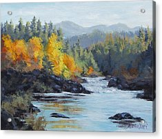 Autumn Falls Acrylic Print by Karen Ilari