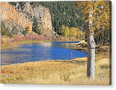 Autumn Fly Fishing Big Hole River Montana Acrylic Print by Jennie Marie Schell