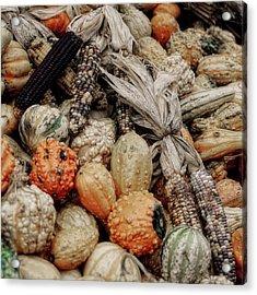 Autumn Gourds 2 Acrylic Print by Joann Vitali