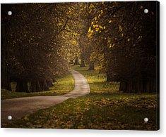 Autumn In Calke Abbey Acrylic Print by Chris Fletcher