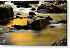 Autumn In The Water Acrylic Print by Dan Sproul