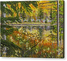 Autumn Landscape In Kennebec Highlands Of Maine Acrylic Print by Keith Webber Jr