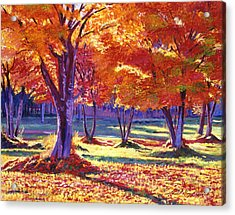 Autumn Leaves Acrylic Print by David Lloyd Glover