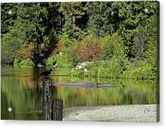 Autumn Melody Acrylic Print by Diane Schuster