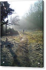 Autumn Morning  Acrylic Print by David Stribbling