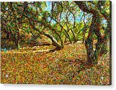 Autumn Oak Forest Acrylic Print by Angela A Stanton