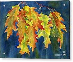 Autumn Oak Leaves  On Dark Blue Background Acrylic Print by Sharon Freeman