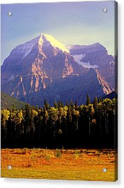Autumn On The Mount Acrylic Print by Karen Wiles