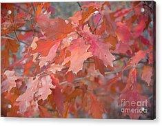 Autumn Paintbrush Acrylic Print by Jola Martysz
