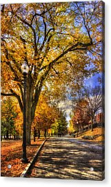 Autumn Path - Boston Public Garden Acrylic Print by Joann Vitali