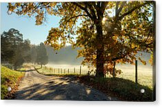Autumn Road Acrylic Print by Bill Wakeley
