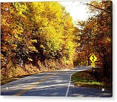 Autumn Road Acrylic Print by Mary Koval