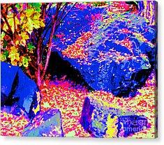 Autumn Rocks Acrylic Print by Ann Johndro-Collins