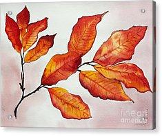 Autumn Acrylic Print by Shannan Peters
