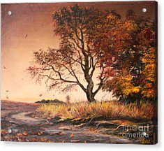 Autumn Simphony In France  Acrylic Print by Sorin Apostolescu