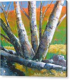 Autumn Splendor Acrylic Print by Melody Cleary