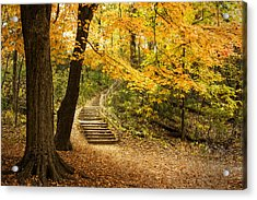 Autumn Stairs Acrylic Print by Scott Norris