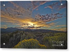 Autumn Sunset Acrylic Print by Dianne Phelps