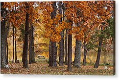 Autumn View Acrylic Print by Sandy Keeton