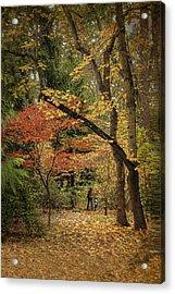 Autumn Walk Acrylic Print by Diane Schuster