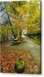 Autumn Way Acrylic Print by Adrian Evans