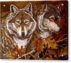 Autumn Wolves Acrylic Print by Sandy Williams