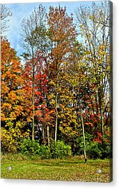 Autumnal Foliage Acrylic Print by Frozen in Time Fine Art Photography