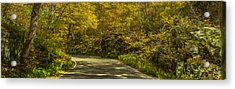 Autumnal Road Acrylic Print by Chris Fletcher
