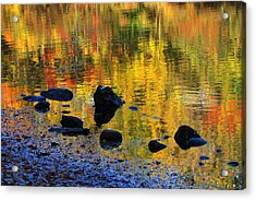 Autumns Rainbow Acrylic Print by Karol Livote