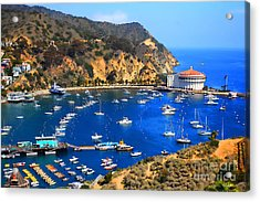 Avalon Harbor Acrylic Print by Cheryl Young