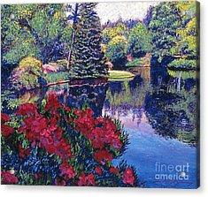 Azaleas In Spring Acrylic Print by David Lloyd Glover