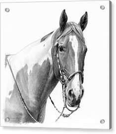 B And W Study Acrylic Print by JQ Licensing