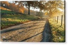 Back Road Morning Acrylic Print by Bill Wakeley