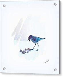 Backyard Bird Acrylic Print by YoMamaBird Rhonda