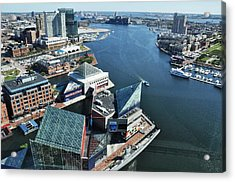 Baltimore Harbor Acrylic Print by Andrew Dinh