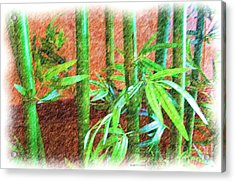Bamboo #1 Acrylic Print by Luther   Fine Art