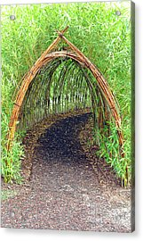 Bamboo Tunnel Acrylic Print by Olivier Le Queinec