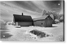 Barn And Grove On Hwy Z Acrylic Print by Stephen Mack