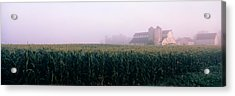 Barn In A Field, Illinois, Usa Acrylic Print by Panoramic Images