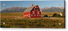 Barn In A Field With A Wallowa Acrylic Print by Panoramic Images
