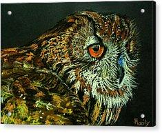Barn Owl Acrylic Print by Marily Valkijainen