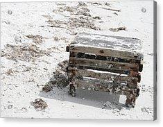 Barnacles On The Beach Acrylic Print by Georgia Fowler