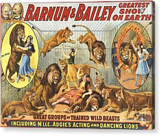 Barnum & Bailey�s  1915 1910s Usa Acrylic Print by The Advertising Archives