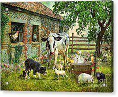 Barnyard Chatter Acrylic Print by Trudi Simmonds